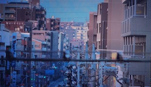 今日の一枚 [12] -正月から富士山とは縁起が良い-