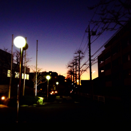 今日の一枚 [13] -冬が寒いのは嫌ですが空が綺麗に見えるのはいいと思う-