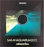 SAKANAQUARIUM2013 sakanaction@幕張メッセで感じた6.1chサラウンドがもたらすライブでの凄い効果【セットリストあり】 #サカナクション