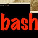 bashの履歴を検索するコマンドが捗りすぎてヤバい!俺の作業効率が2倍どころか更に倍してドンッ!